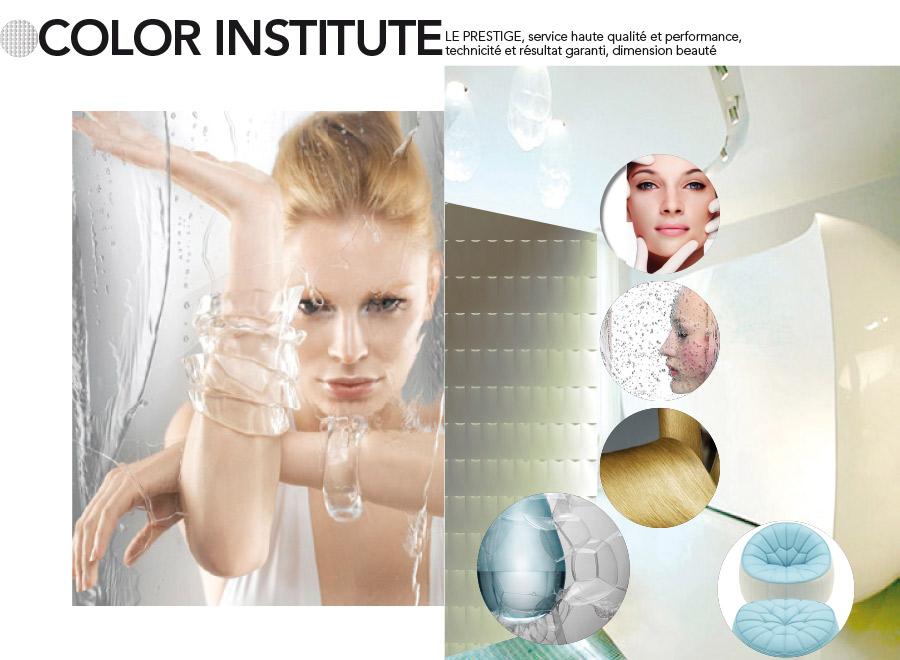 Schwarzkopf Professional Color Institute