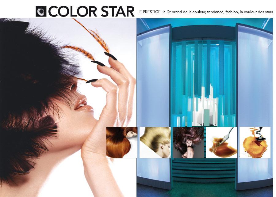 Schwarzkopf Professional Color Star