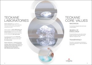TEOXANE-BROCHURE-INSTITUTIONNELLE-3-KATELO